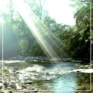 Ayurveda, naturopathie, nutrition, homéopathie